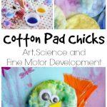 Cotton Pad Chick craft - Happy Hooligans