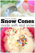 French Vanilla Snow Cones Made With Real Snow