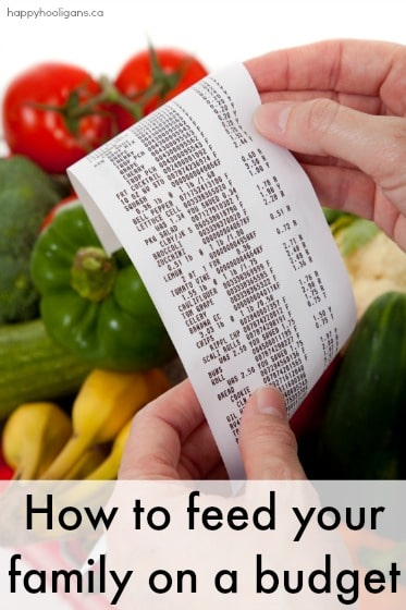 40+ Ways to Save Money on Groceries when you Have a Hungry Family to Feed