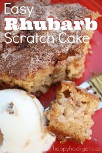 Easy Rhubarb Scratch Cake - Happy Hooligans