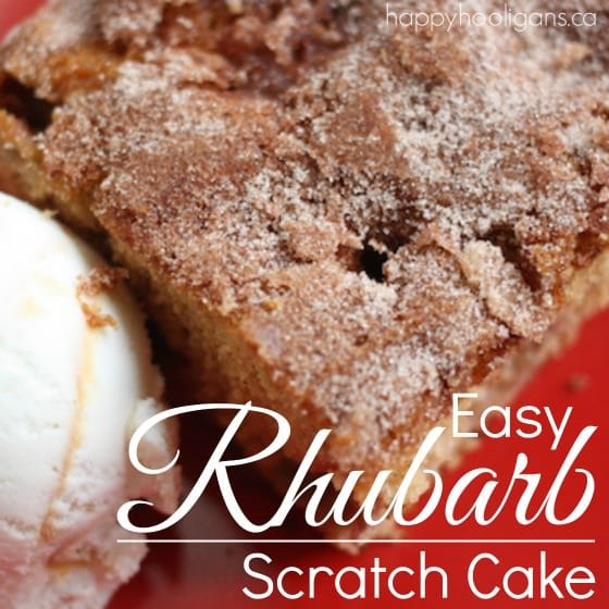 Rhubarb Cake from Scratch