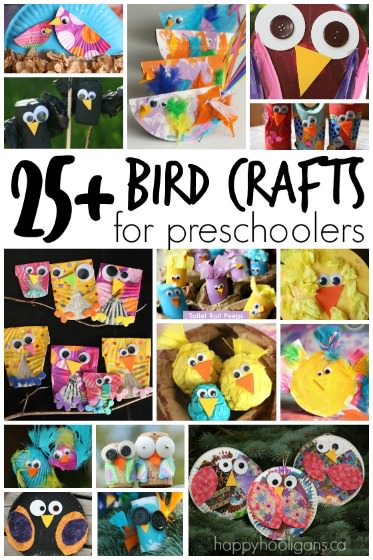 25 Easy Bird Crafts For Preschoolers Happy Hooligans