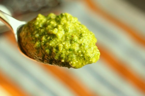 Spoonful of Fresh Homemade Pesto