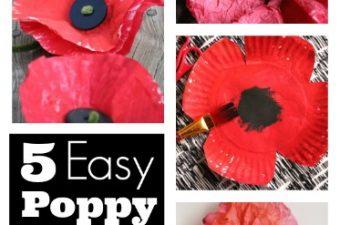 5 Easy Poppy Crafts Round Up