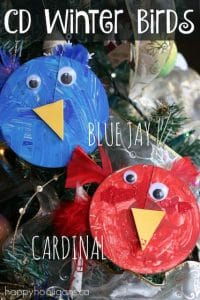 CD winter birds - blue jay and cardinal - Happy Hooligans