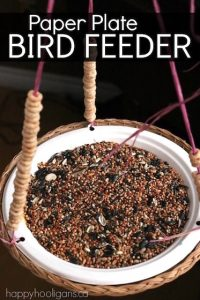 Paper Plate Bird Feeder for Kids to Make