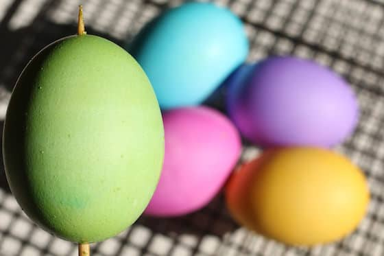 Vibrant eggs dyed with food colouring