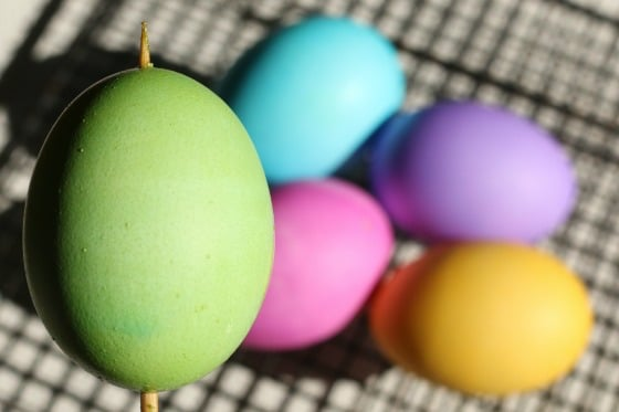 green, blue, pink, purple and yellow eggs dyed with Wilton icing gels