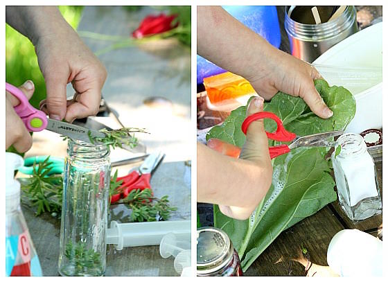 children cutting up leaves and putting them in jars to make perfume