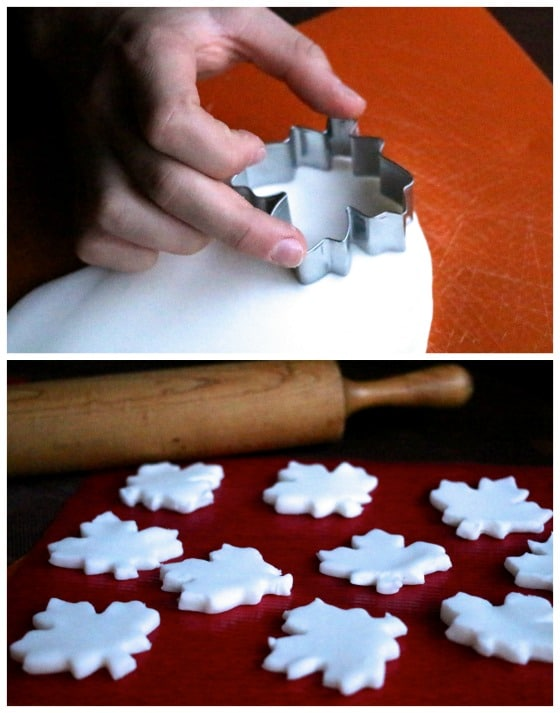eaf-cookie-cutter-and-white-clay-dough