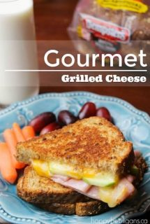 Gourmet Grilled Cheese Sandwich with Ham and sliced Green Apple