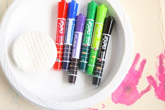 Expo Markers with Plastic Plates and Makeup Pad Eraser