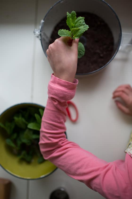 putting mint leaves in oreo flowerpot cakes