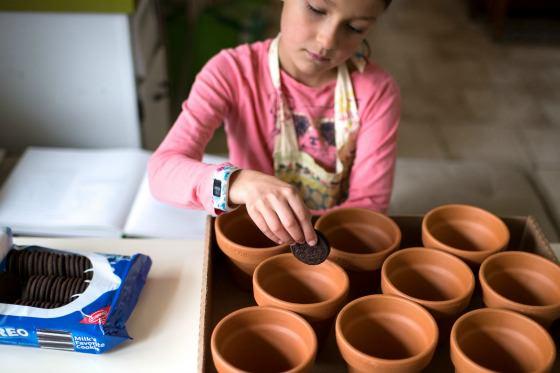 putting oreos in flowerpots