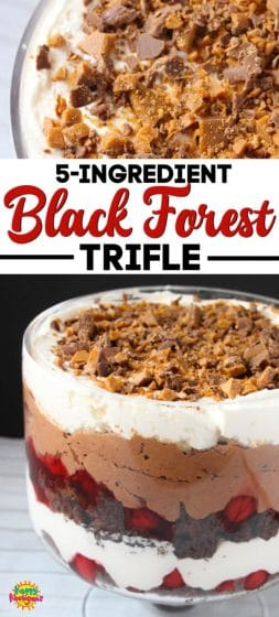 Black Forest Trifle 5 ingredients long pin
