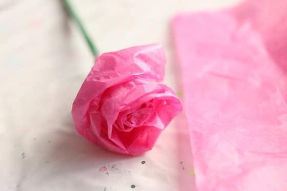 Single tissue paper rose