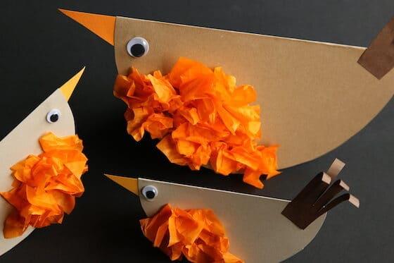 closeup tailfeathers glued to paper robin