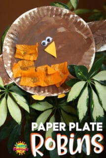 paper plate robin craft for toddlers and preschoolers
