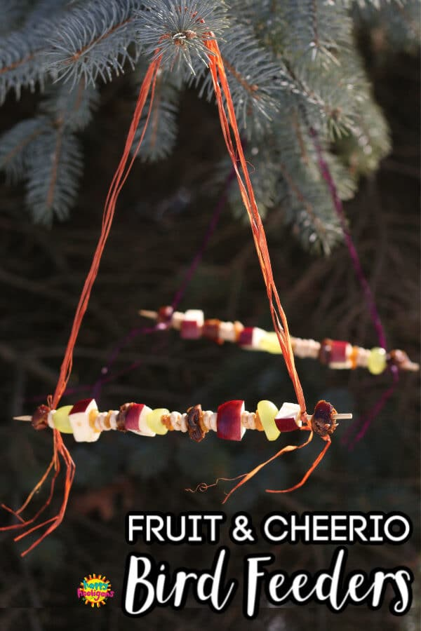Fruit and Cheerio Bird Feeder hanging from tree
