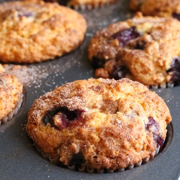 Closeup blueberry-oatmeal muffins in muffin pan