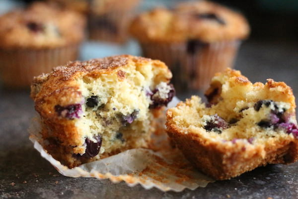 blueberry oat muffin close up horizontal