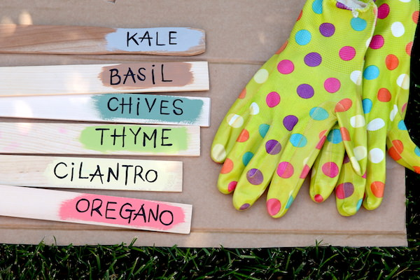 paint sticks with herb names painted beside gardening gloves