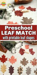 Fall Leaf shapes for preschool matching activity long pin
