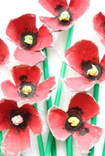 Egg Carton Poppies Feature Img