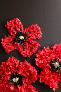 tissue paper poppy craft feature image